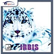 Настольный теннис: накладка Spinlord Irbis